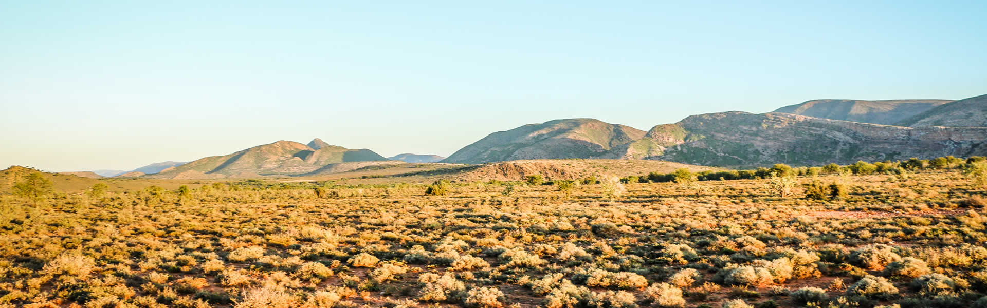 Karoo Plains to explore at Marlu